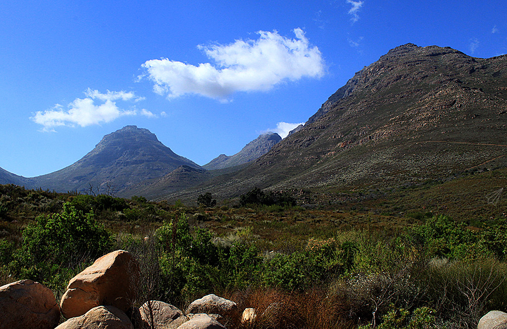 cederberg mountains 5