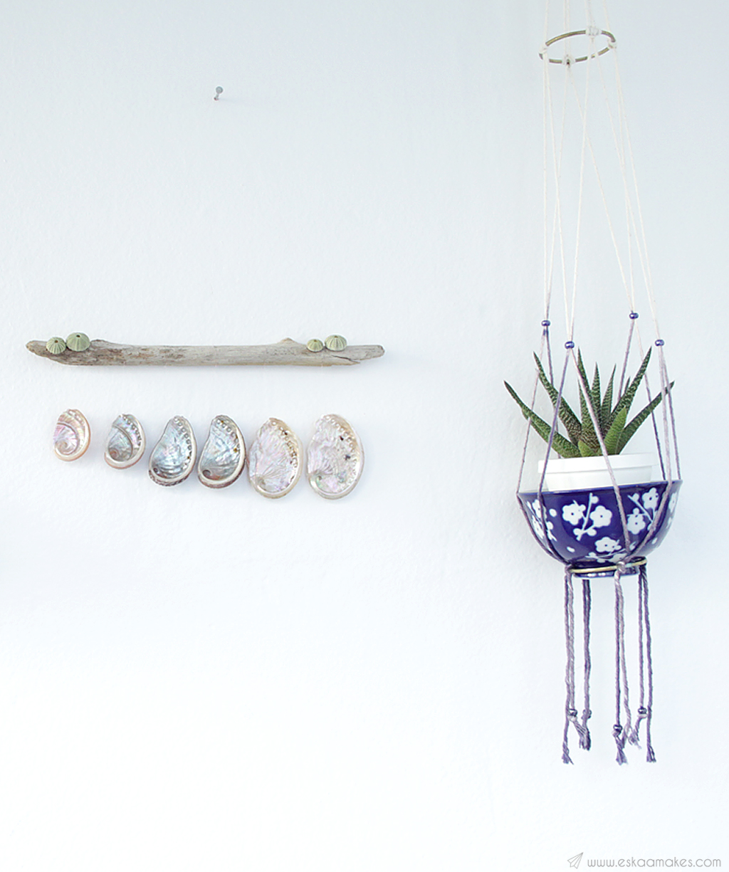 diy shell driftwood wallhanging 2