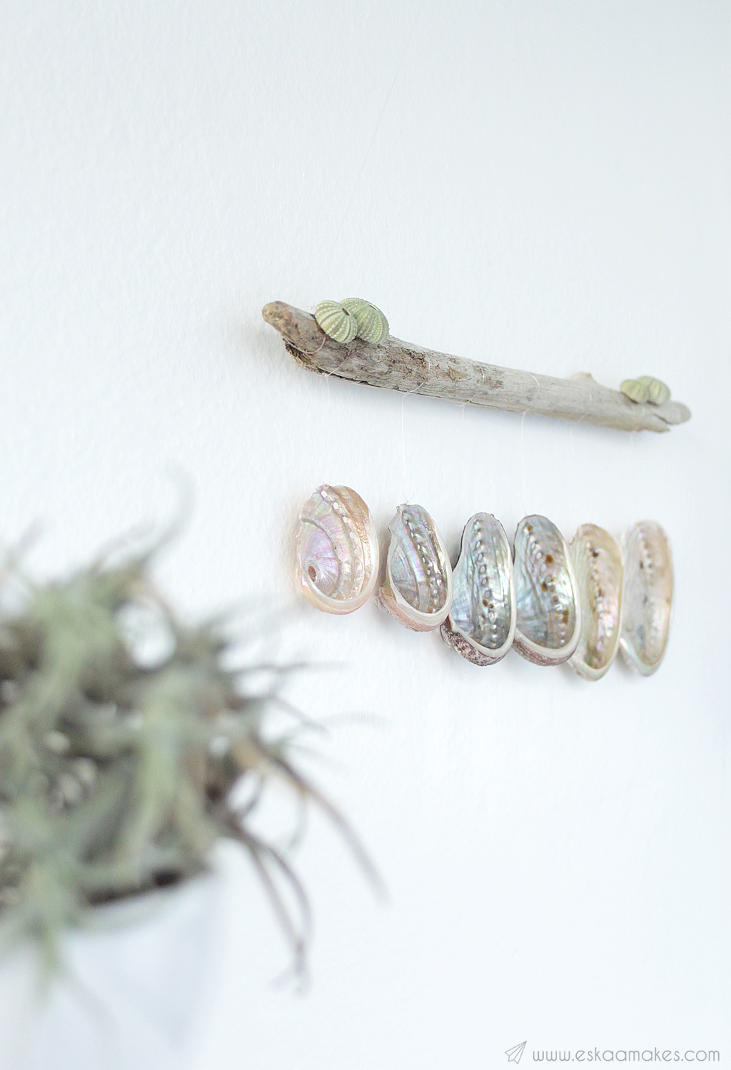 diy shell driftwood wallhanging 5