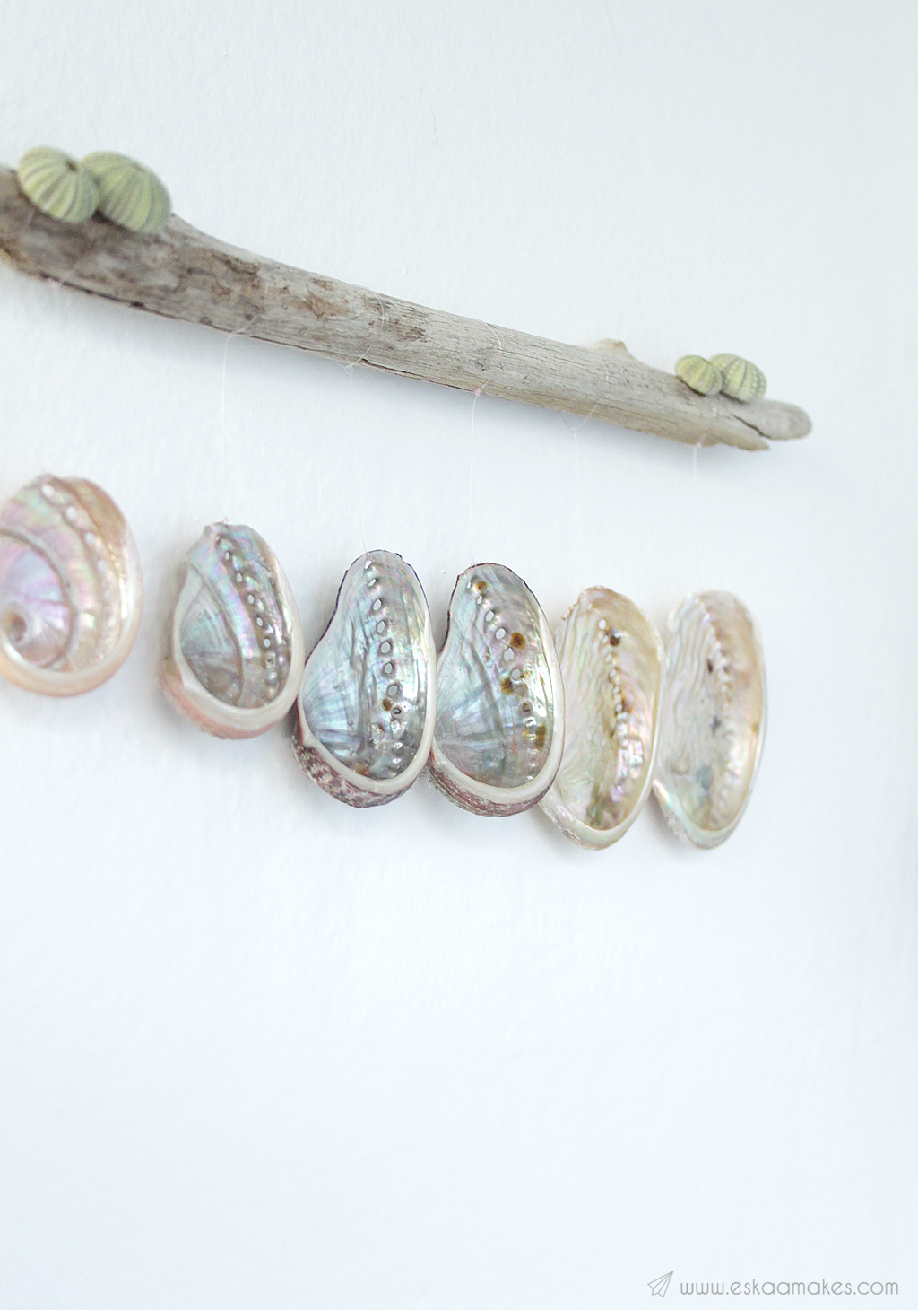 diy shell driftwood wallhanging 6
