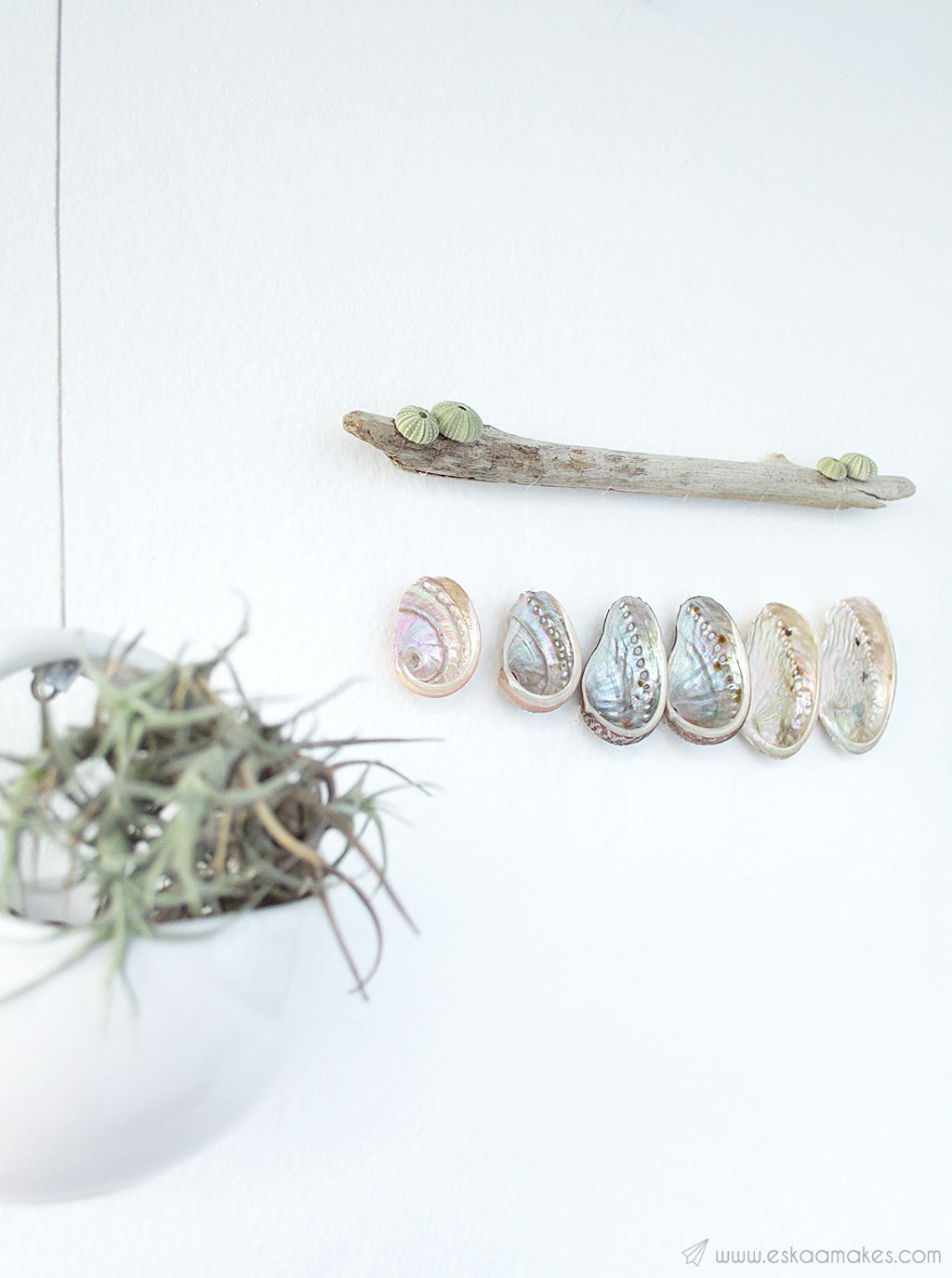 diy shell driftwood wallhanging 7