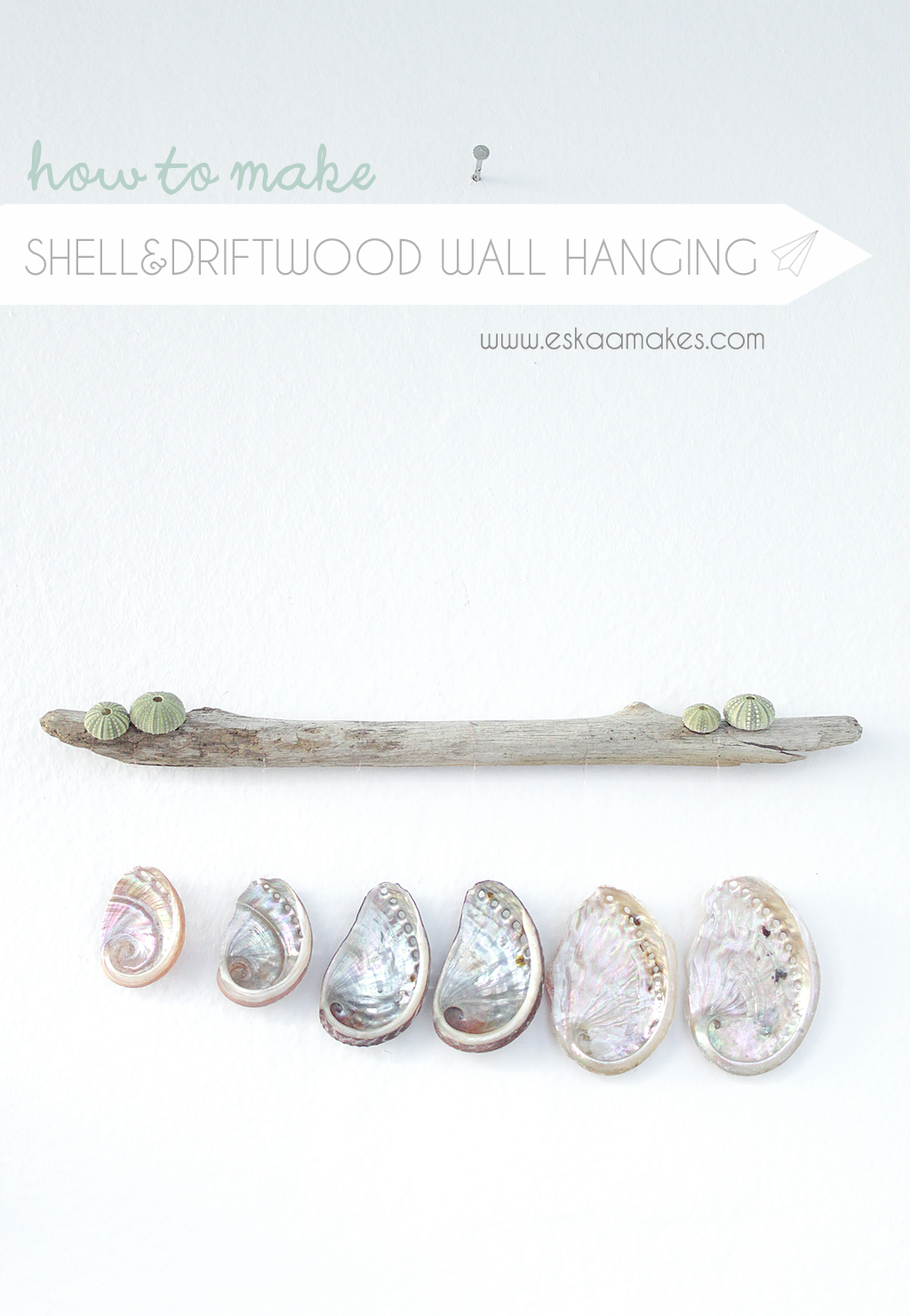 diy shell driftwood wallhanging title