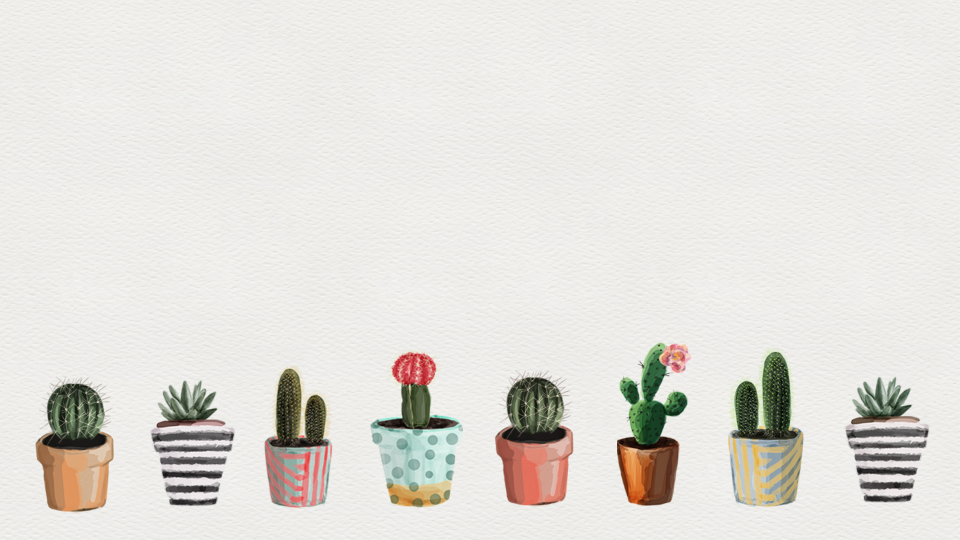 download the free digital wallpaper cacti love hd 1920a—1080
